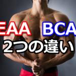 EAAとBCAAとの違い