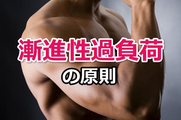 【漸進性過負荷の原則】筋肉を大きくするために筋トレで大切なこと